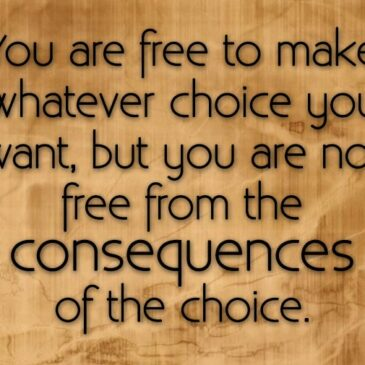 The Impact of our Choices